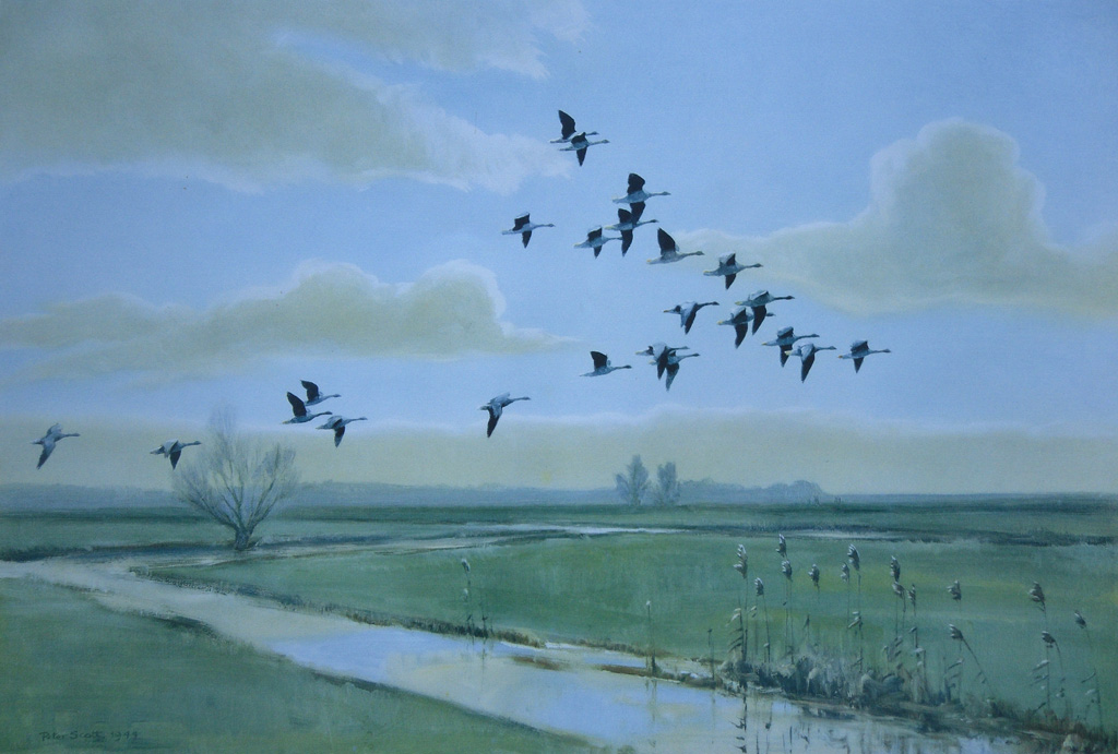 """To a Waterfowl"""" (1818), by William Cullen Bryant (1794-1878"""